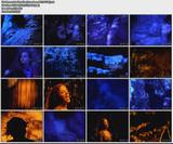 Sarah McLachlan - Into The Fire [ntsc-dd2.0-clean-YGB]